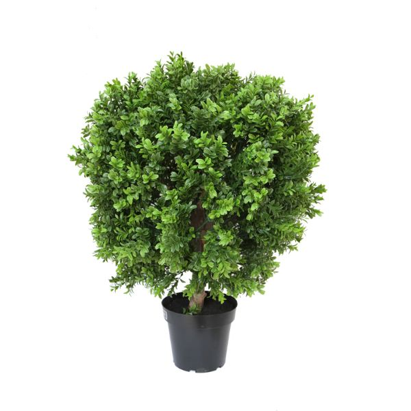 Hamptons Home New Boxwood Ball in Pot 60 cm