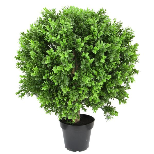 Hamptons Home New Boxwood Ball in Pot 70 cm