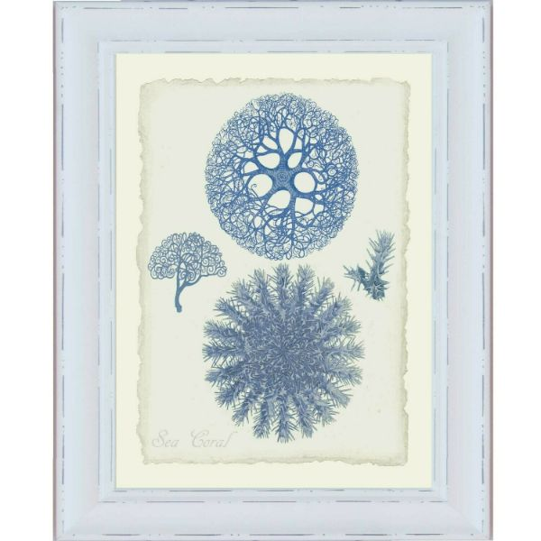 Hamptons Blue Coral White Framed Wall Art (Design 1) | Hamptons Home