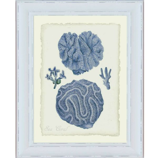 Hamptons Blue Coral White Framed Wall Art (Design 2) 61cm x 52cm x 2cm