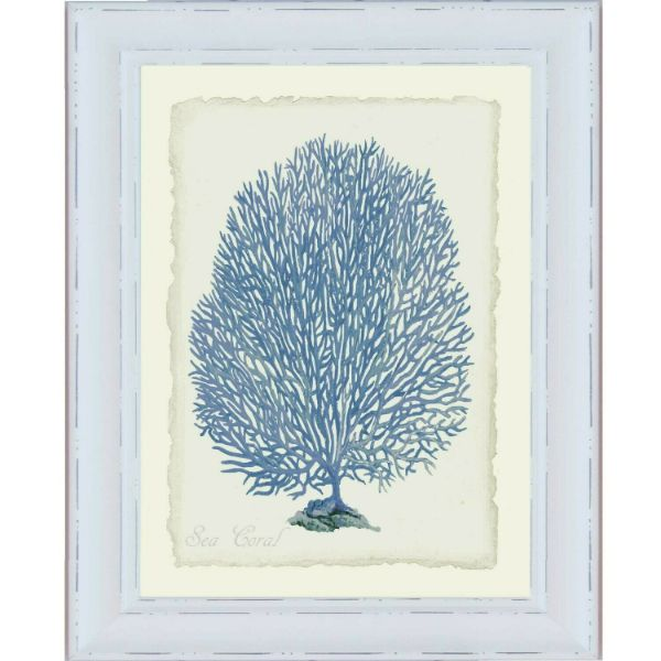 Hamptons Blue Coral White Framed Wall Art (Design 4)  61cm x 52cm x 2cm