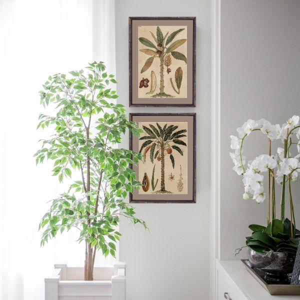 Hamptons Home Date Palm Small Framed Artwork  (Design 3) 53 cm x 43.5cm