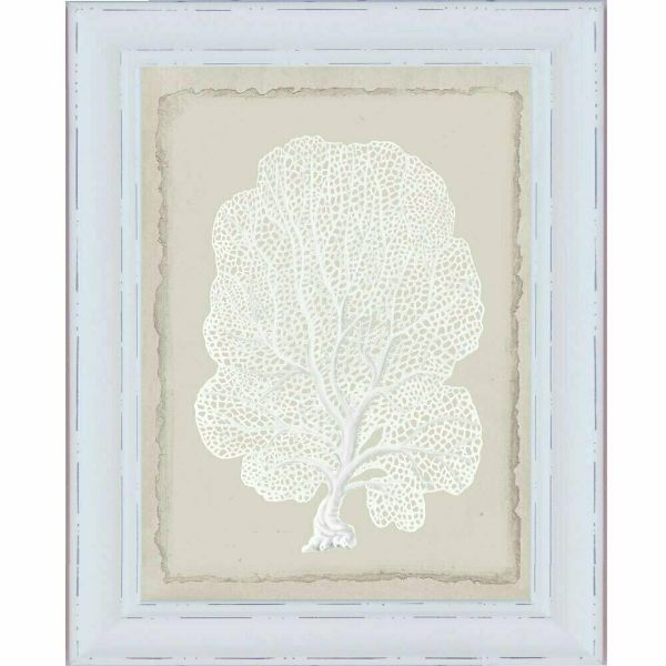 White Coral White Framed Wall Art | Hamptons Home
