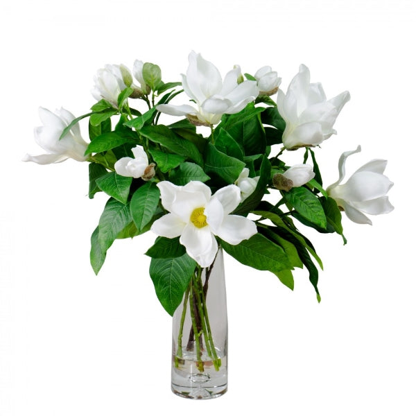 Hamptons Home White Magnolia Liliflora Set in Resin