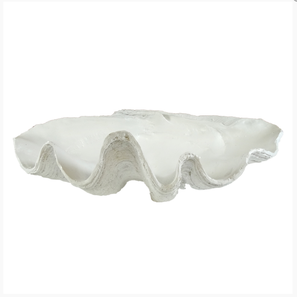 Hamptons Home Matt White Extra Large Clam Shell Decor