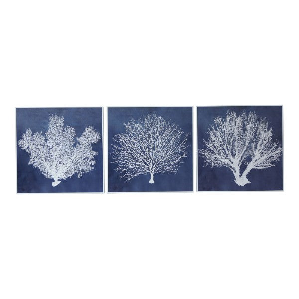Navy and White Coral Framed Prints Set of 3