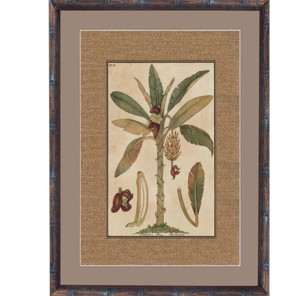 Hamptons Home Dark Rattan Banana Palm Framed Artwork  (Design 2) 93 cm x 74 cm