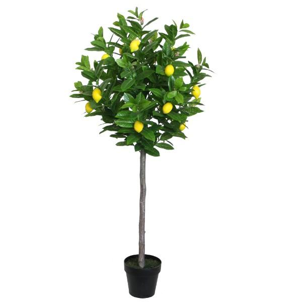 Flowers - Potted Faux Lemon Tree 145 Cm H | Hamptons Home