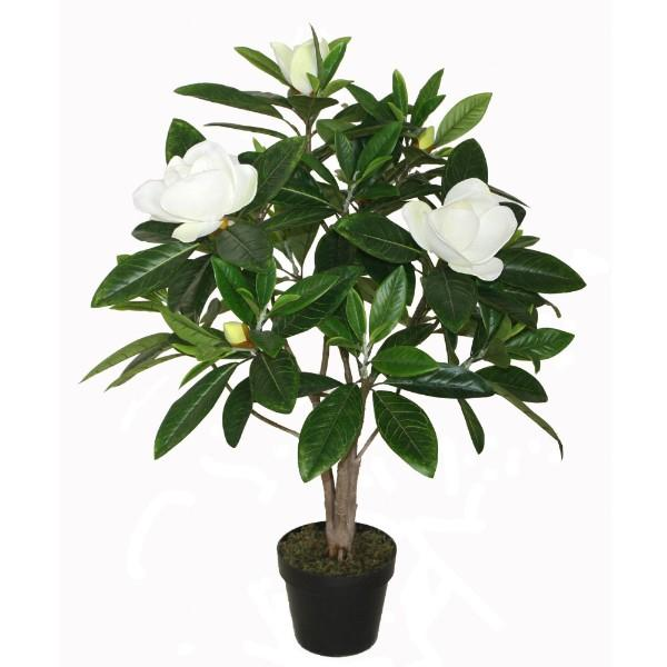 Flowers - Potted Faux Magnolia Tree 90 Cm H | Hamptons Home