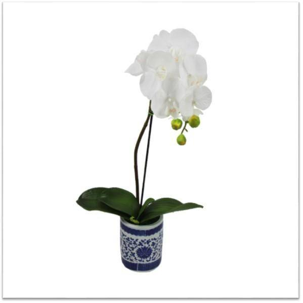 Real Touch Orchids in Ginger Jar Vase 48 cm H - Hamptons Home {product_type] Hamptons style Furniture