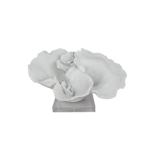Home Decor - Cape Cod White Coral On Clear Base 18 Cm | Hamptons Home