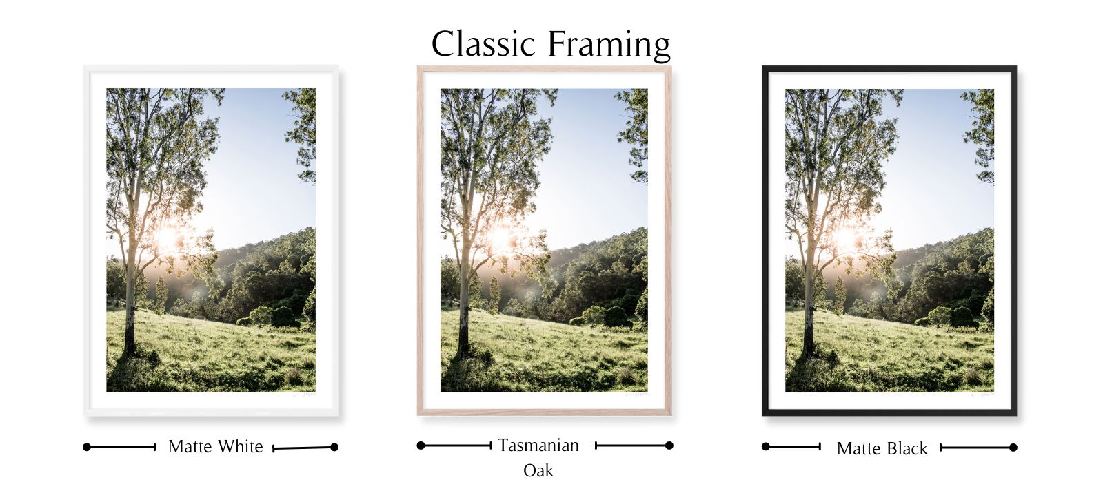 Country Sunset by Lauren Daly | Classic Framing Style | LD Art House