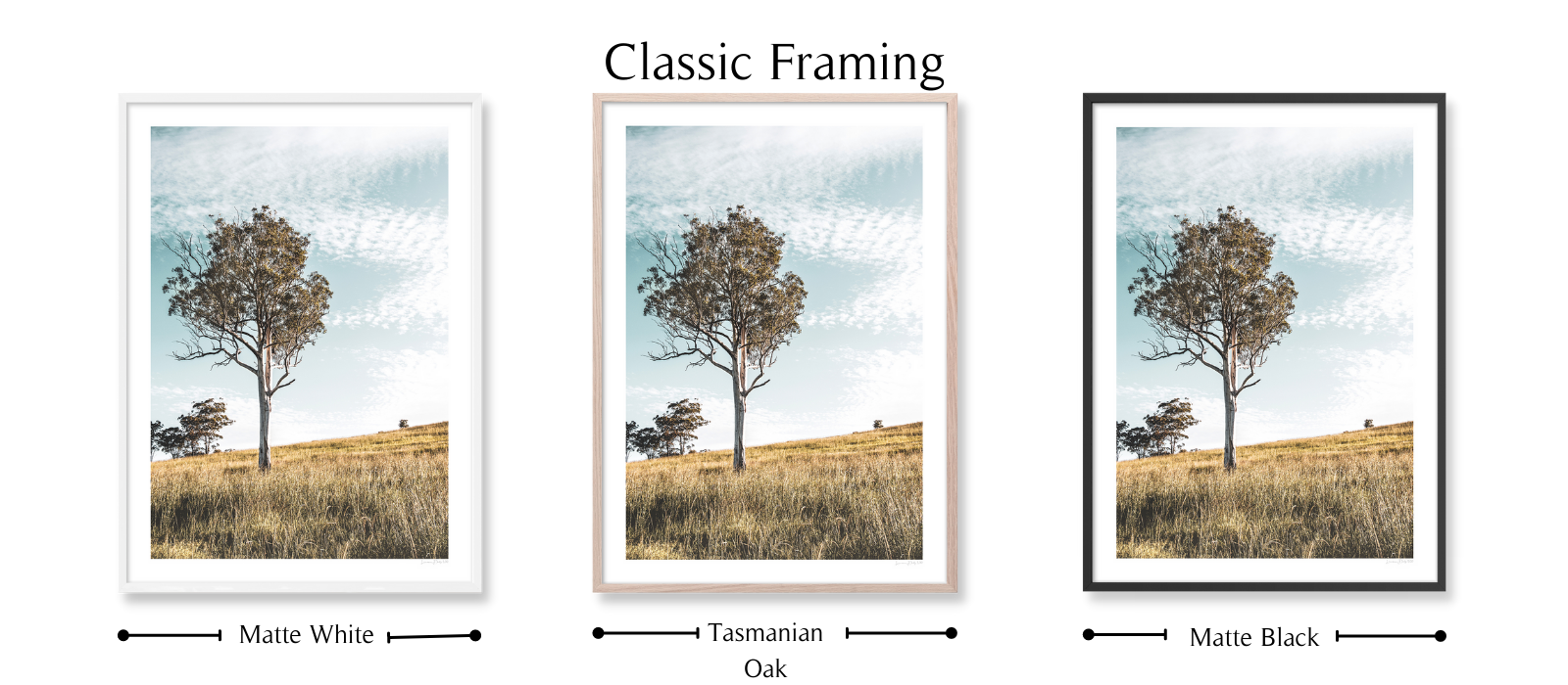Golden Hour by Lauren Daly | Classic Framing Style | LD Art House