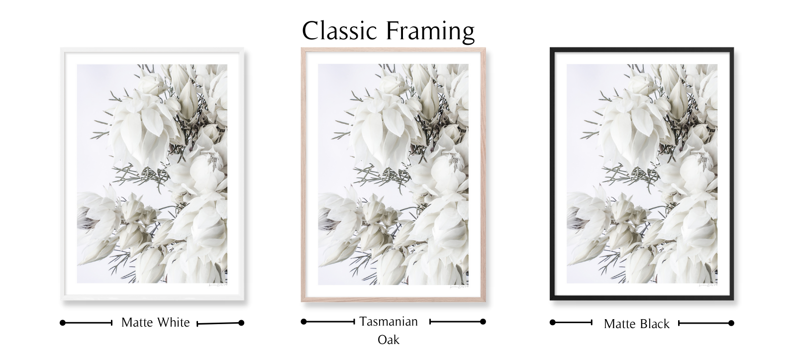 Blushing #1 By Lauren Daly | Classic Framing Style | LD Art House