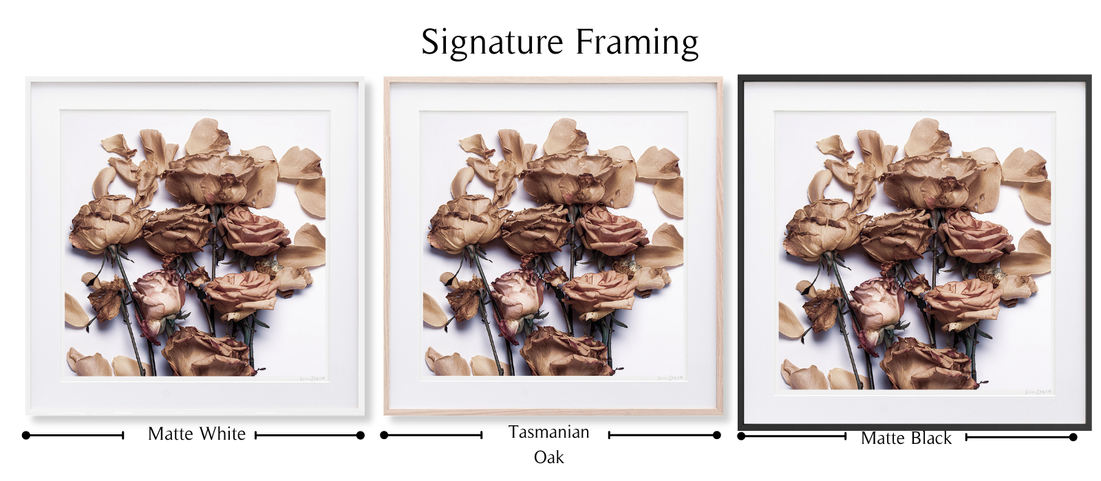 By Any Other Name | Signature Framing | By LD Art House