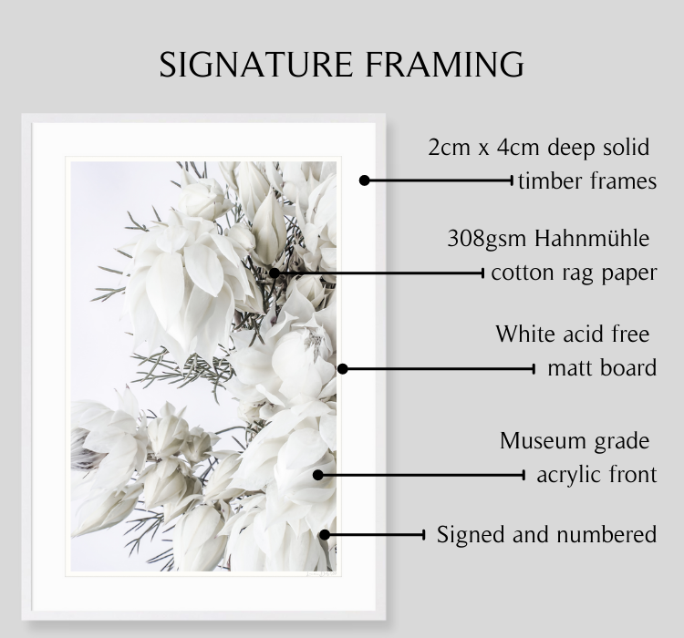 Blushing by Lauren Daly | Signature Framing Details | LD Art House