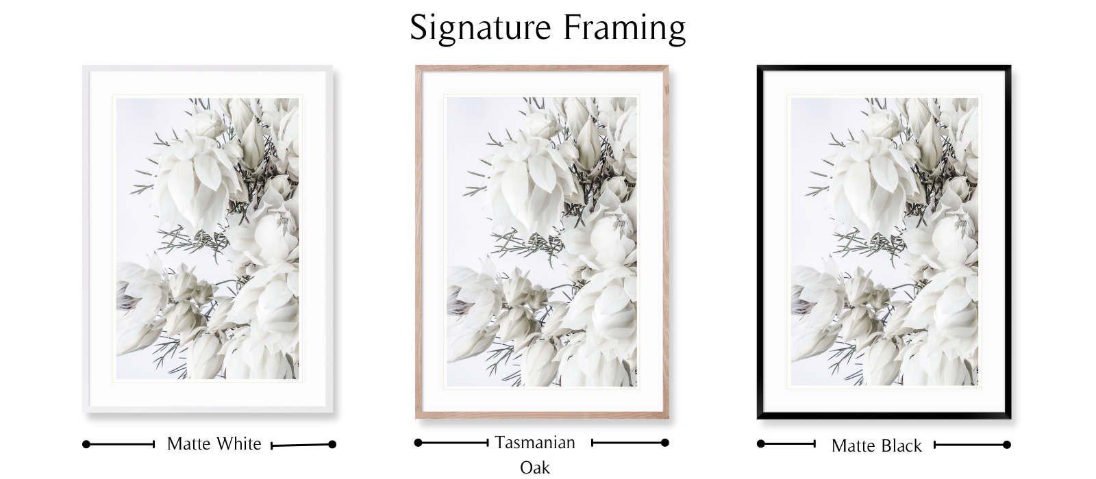 Blushing #1 By Lauren Daly | SIGNATURE Framing Style | LD Art House
