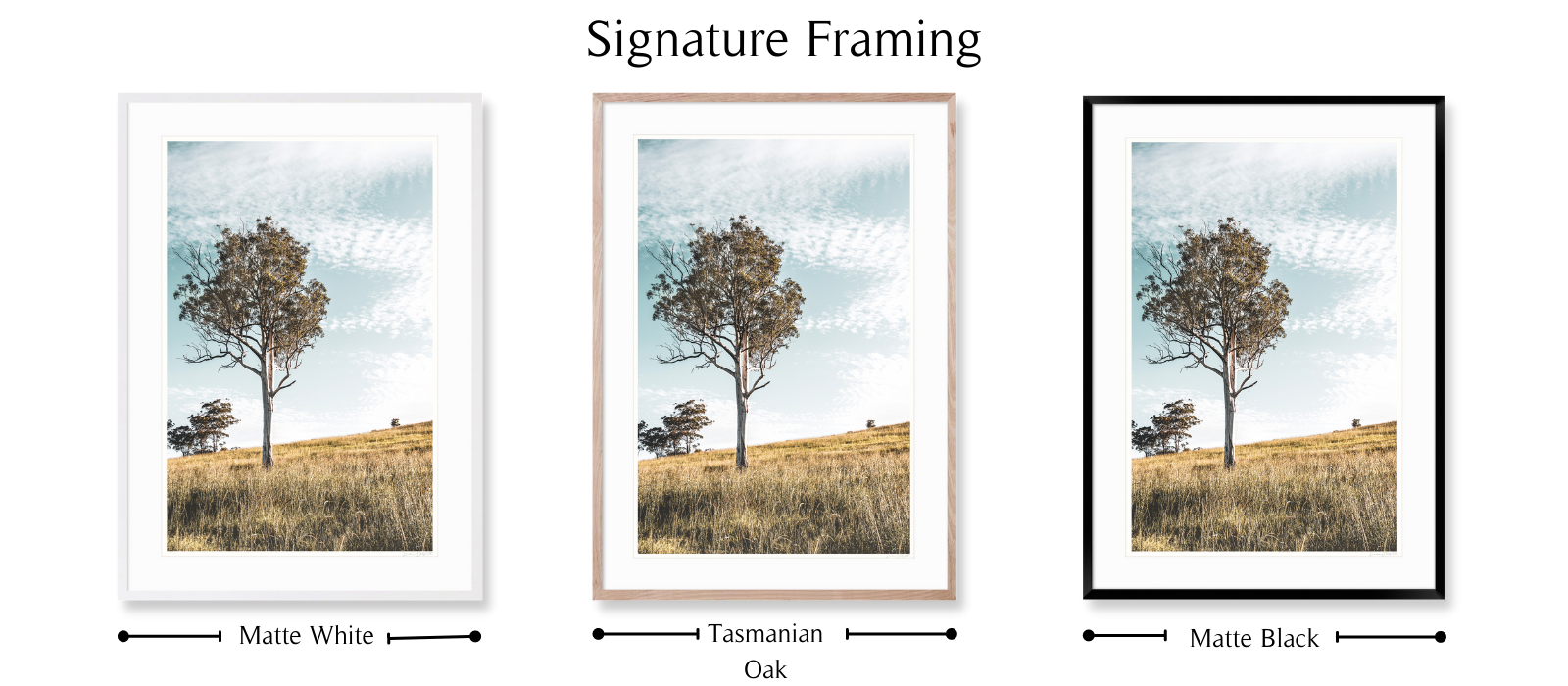 Golden Hour by Lauren Daly | Signature Framing Style | LD Art House