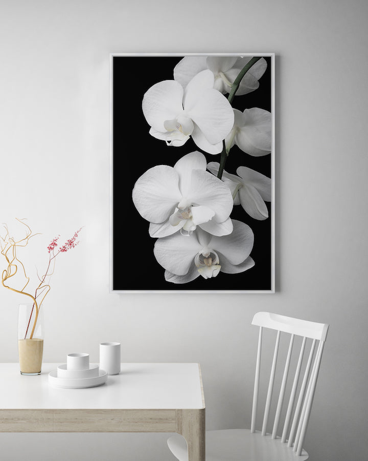 Orchid Bliss #2 Canvas Art | Photographic floral artwork | Wall Style