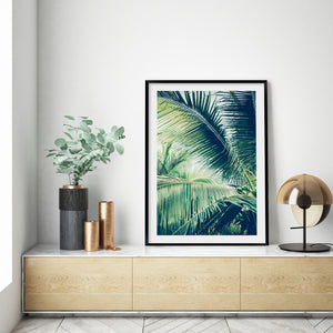 Tropical Palm #3