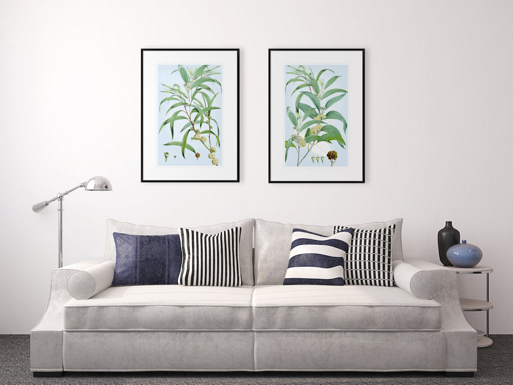 SUMMER BLOOM 3 Classic country and Hampton's style botanical wall art