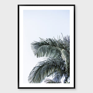 Palm Life #3 *Original, contemporary photographic image by Lauren Daly
