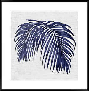 Hampton's Blue Palm #2