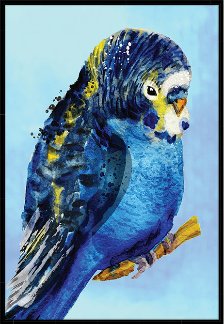 BLUE BUDGIE #1 CANVAS