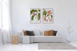 EUCALYPTUS DREAMING #1 * Contemporary Australian Native Botanical Art Print