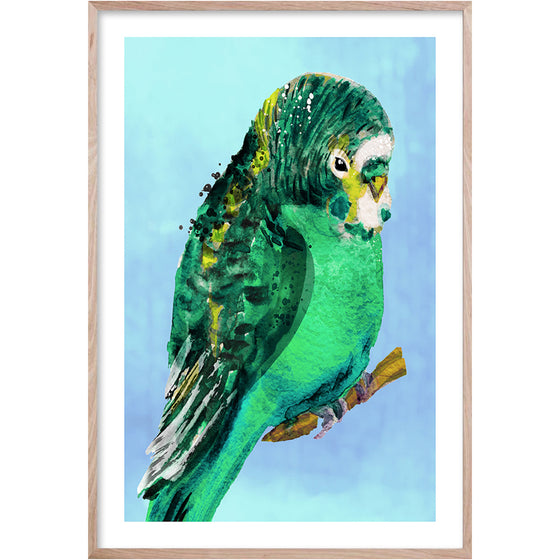 GREEN BUDGIE 1 Framed contemporary style, hand painted bird wall art