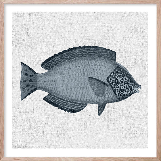 TROPICAL FISH 2 Hampton's style artwork hand painted wall art print