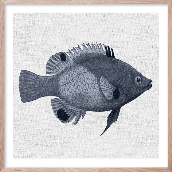 TROPICAL FISH 1 Hampton's style artwork hand painted wall art print