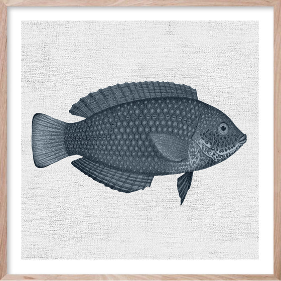 TROPICAL FISH 4 Hampton's style artwork hand painted wall art print