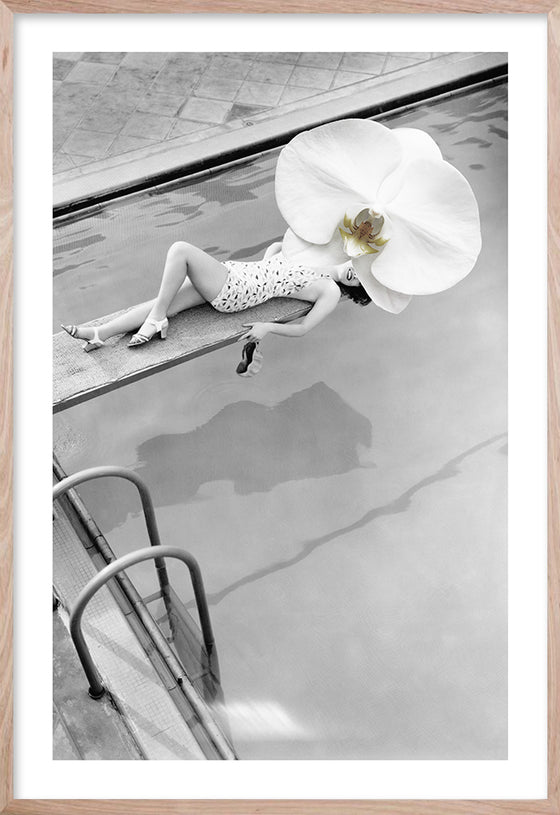 VINTAGE ORCHID * Contemporary, photographic fine wall art print