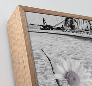 Vintage Daisy Canvas