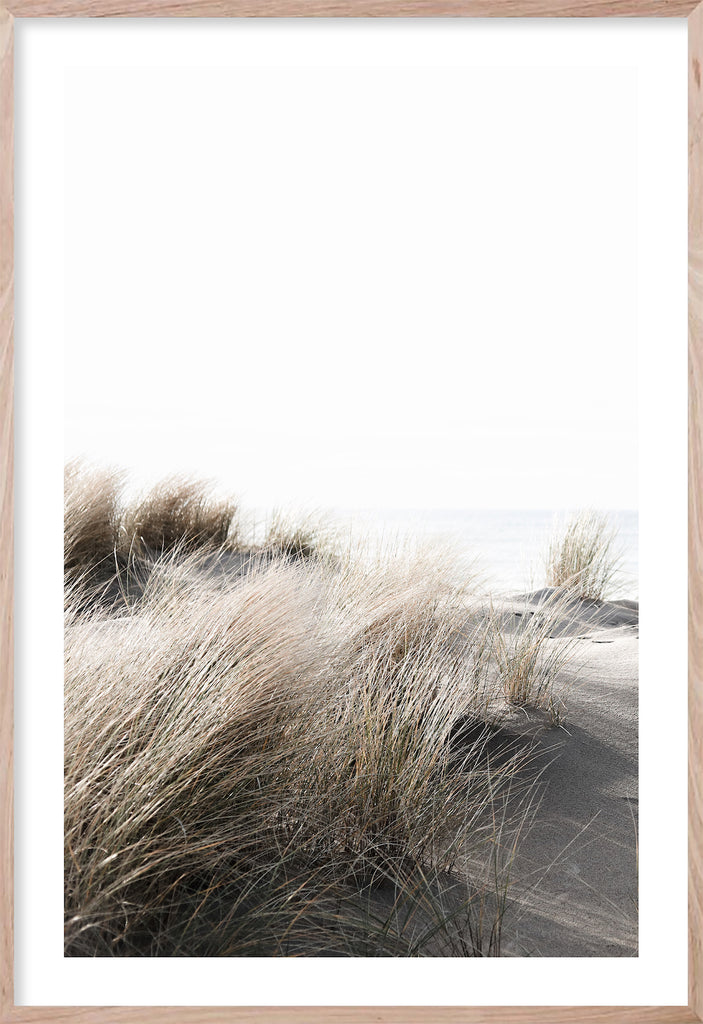 BY THE DUNES #1