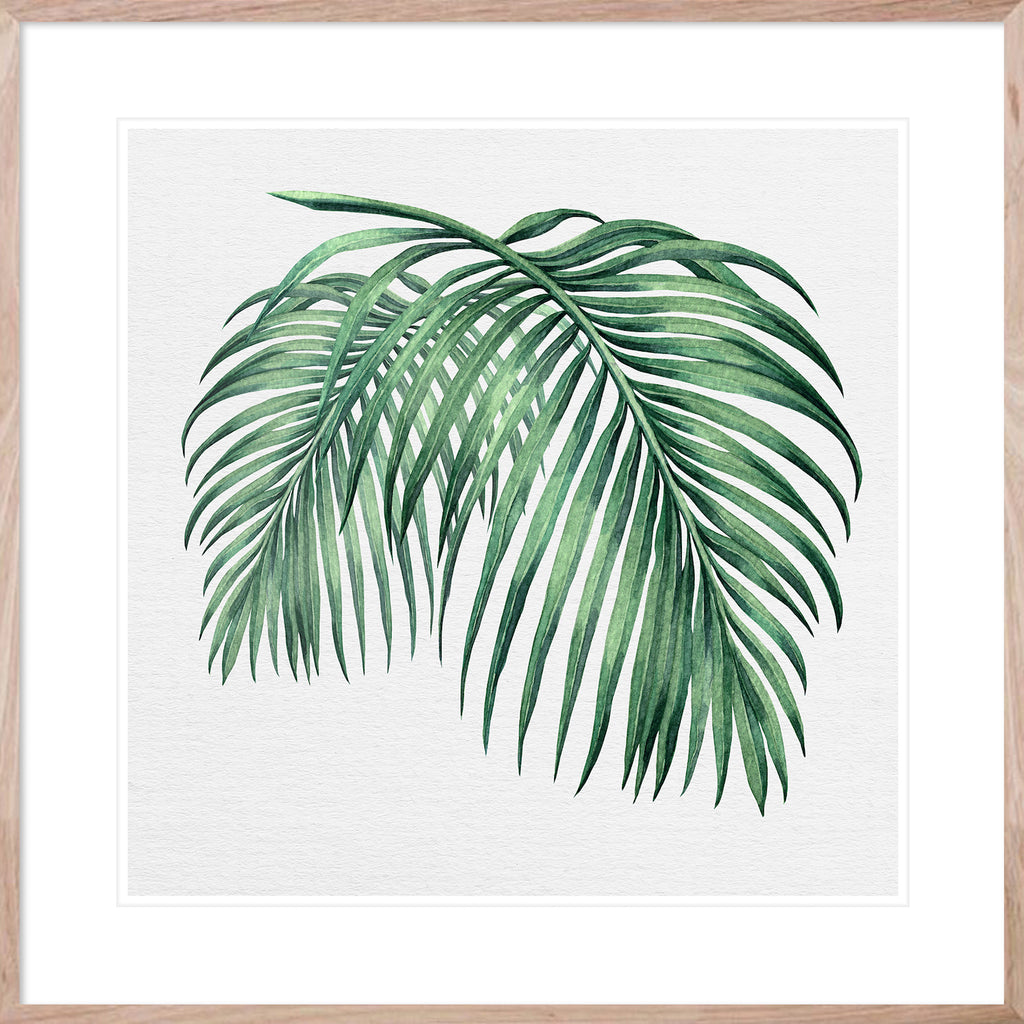 Hampton's Green Palm Collection #2 * Coastal style, hand painted, fine art print