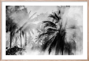 HADOW LIGHT Palm Sunrise Contemporary Tropical style coastal wall art