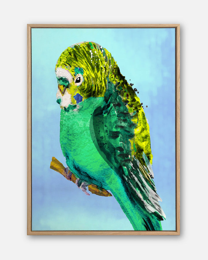 Green Budgie #2 | Contemporary Canvas Art | Wall Style