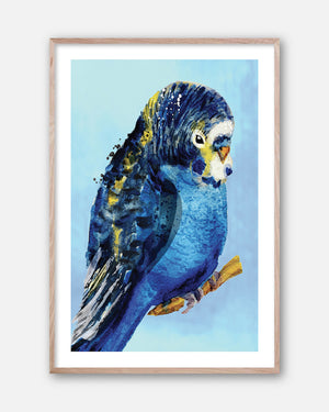 BLUE BUDGIE #1  Framed contemporary style, hand painted bird wall art