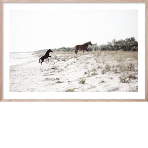 RUN FREE 1 *  Photographic archival, coastal fine wall art horse print