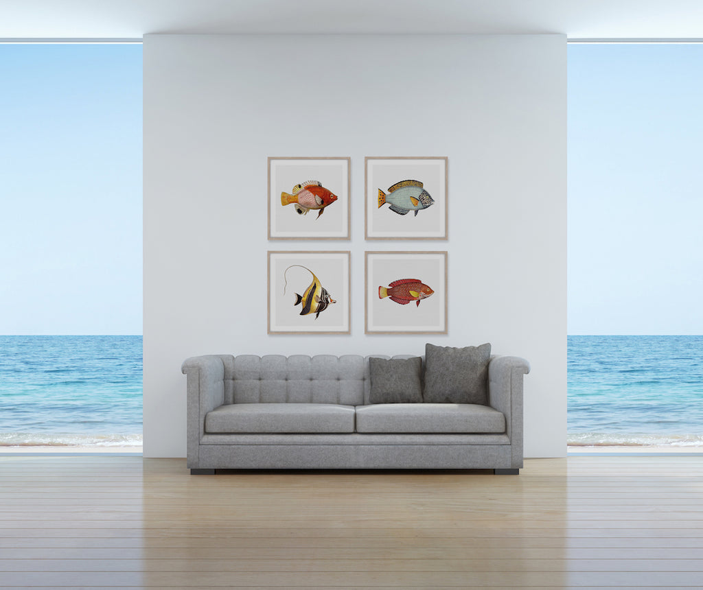 TROPICAL FISH COLLECTION #8