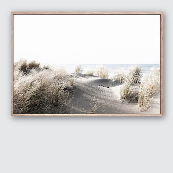 By The Dunes #3 Canvas