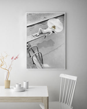 Vintage Daisy Orchid Art | Contemporary photographic artwork | Wall Style