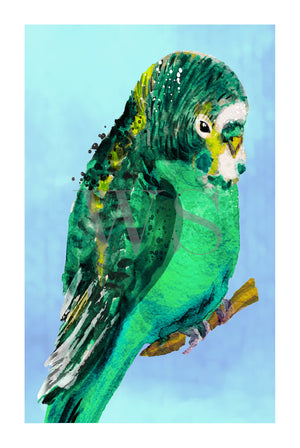 GREEN BUDGIE #1 * Contemporary, hand painted, fine art print
