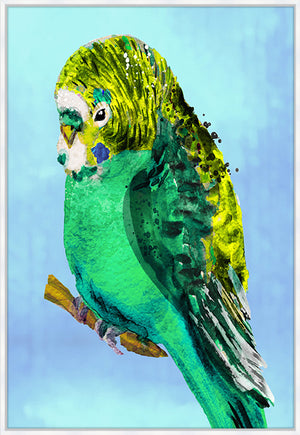 Green Budgie #2 Canvas