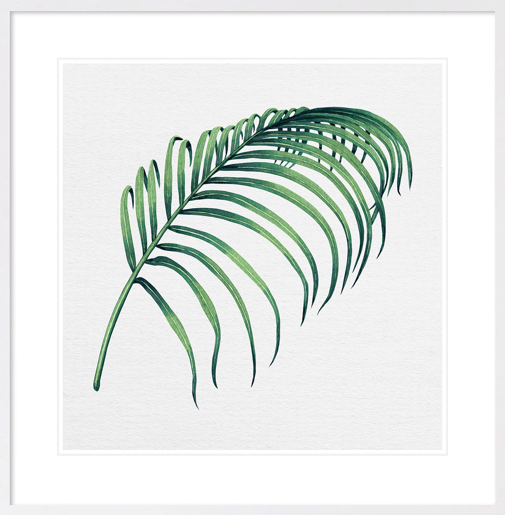 Hampton's Green Palm Collection #3 * Coastal style, hand painted, fine art print