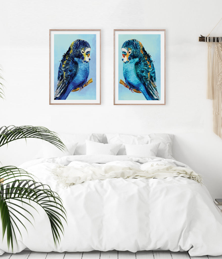 Blue Budgie #1 & #2 Pair
