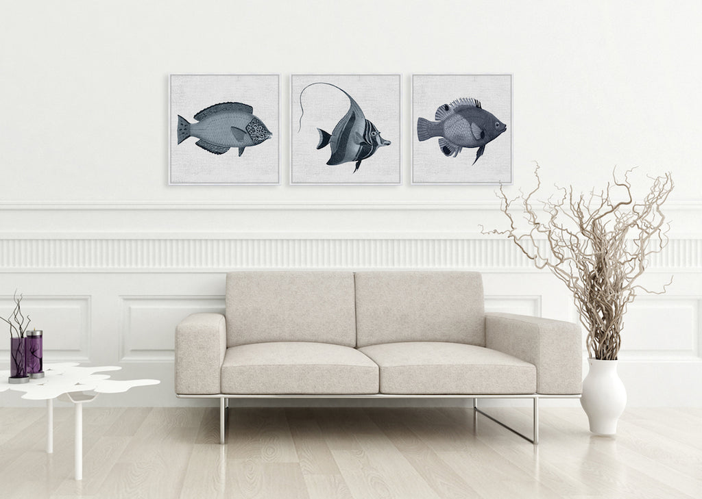 Tropical Fish Collection #1 Canvas