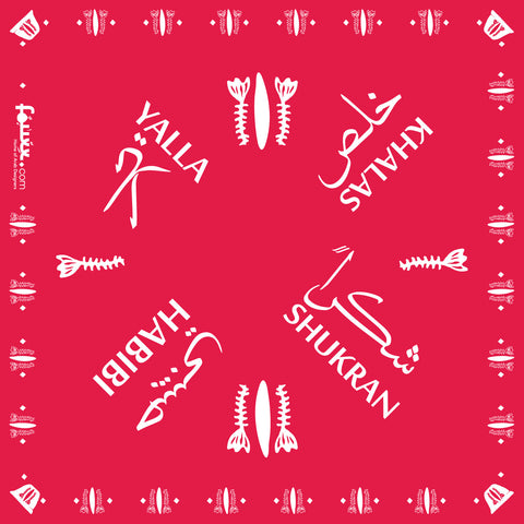 Red Bandana & Face Cover